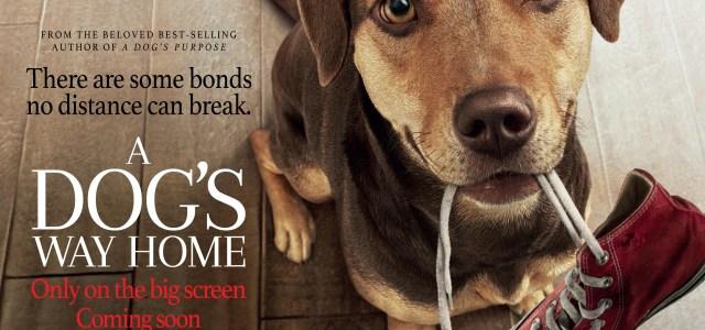 A DOG'S WAY HOMEreleases into UK cinemasJanuary 25, 2019