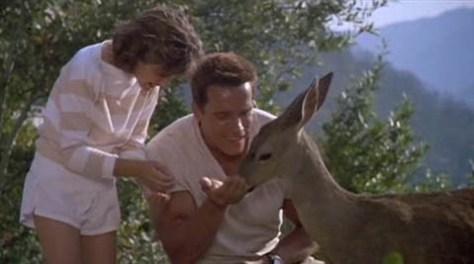 commando_deer