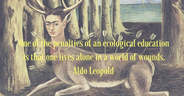 """5 Tips for Eco-Conscious People Who Feel Like They're """"Living Alone in a World of Wounds"""""""