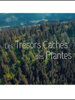 Les Trésors Cachés des Plantes