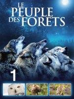 Le Peuple des forêts : l'Âge de glace