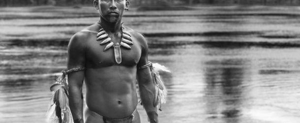 """""""Der Schamane und die Schlange"""" (2016) Kritik: Apokalypse Amazonas"""