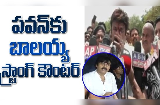 Balakrishna Strong Counter To Pawan Kalyan Over Comments On TDP Govt And Nara Lokesh