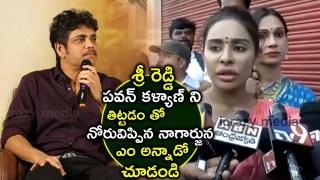 Nagarjuna Shocking Comments On Sri Reddy For Scolding Pawan Kalyan | #SriReddy