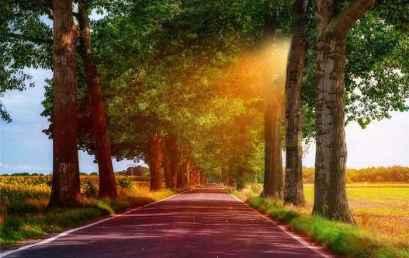 Περπατώντας στο δρόμο…
