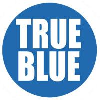 True Blue MERV 7 1Inch filter | Filters-NOW.com