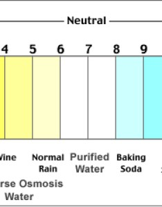 Ph scale also levels in drinking water filterwater rh