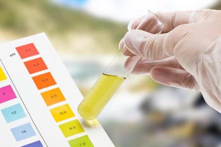Bekannt So könnt Ihr euren pH Wert messen - Wasserwelten Magazin BZ95