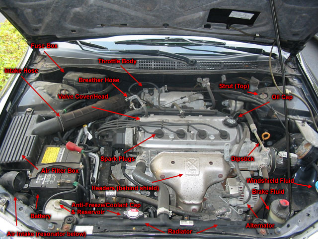 Diagram In Addition Simple Piston Engine Diagram On Car Engine