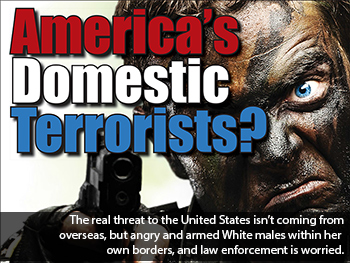 Image result for domestic terrorism