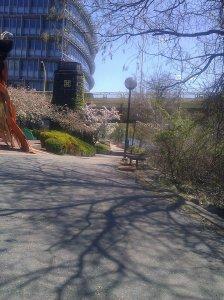 May - morning walk