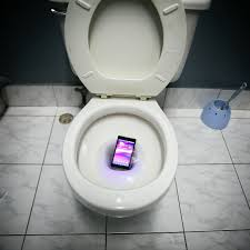 phone in toilet