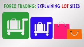 What is a Lot in Forex Trading