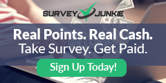 Make Extra Money with Survey Junkie