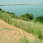 Mali : la «révolution verte» est possible