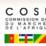 Cosumaf: Roland Berger choisi pour jauger le potentiel régional