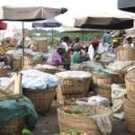 Microfinance au Togo: entre croissance et flou artistique