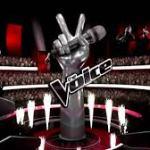 The voice Afrique francophone: la plus belle voix d'Afrique francophone!
