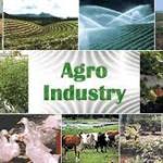 L'agro-écologie, une solution pour éradiquer l'insécurité alimentaire, selon la FAO