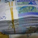 Cameroun : 30 milliards de F CFA mobilisés sur le marché des titres publics de la BEAC