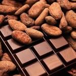 La Côte d'Ivoire adopte un label pour son chocolat
