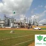 Nigeria : Olam se lance dans la fabrication d'aliments de bétail