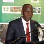 Côte d'Ivoire: coup de tonnerre dans le secteur de l'anacarde