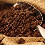 Café/Cameroun: le secteur se porte mieux en 2016
