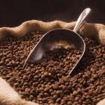 Côte d'Ivoire: le prix d'achat du café en hausse de 12%