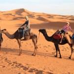 Mauritanie: le tourismesous de bonsaugures