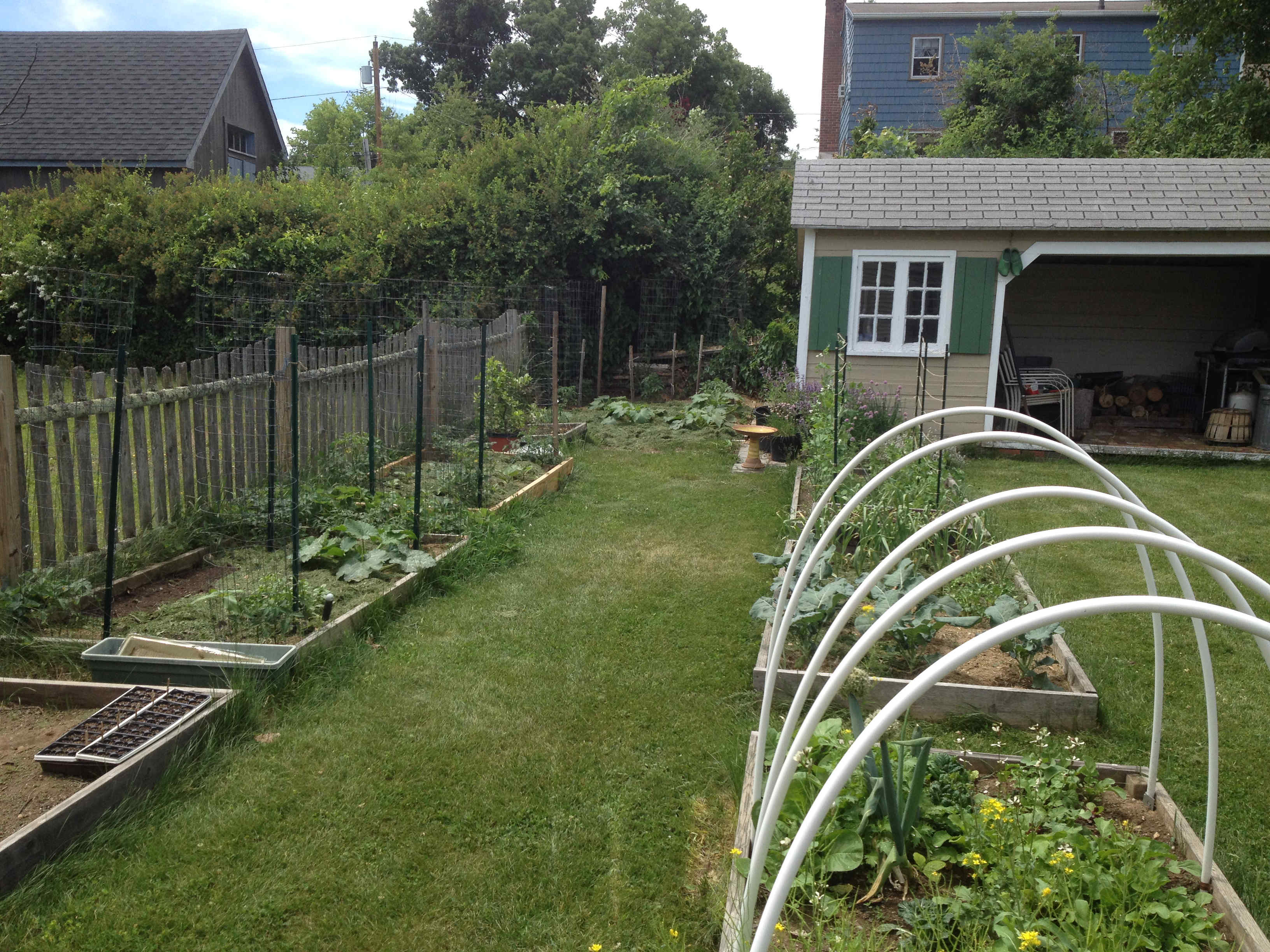Cool The Vegetable Garden Ideas - Landscaping Ideas for Backyard ...