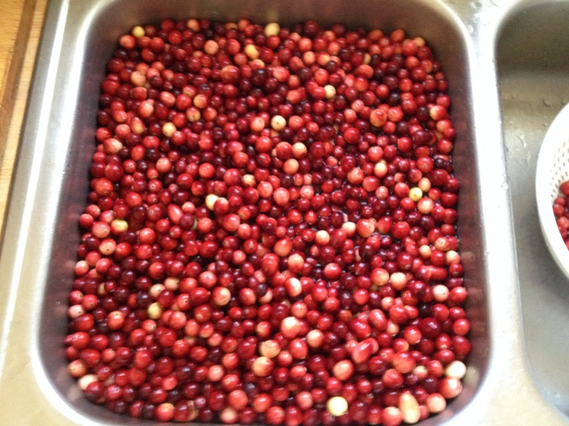 Wash Cranberries