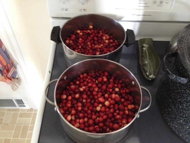 Wild Cranberry Compote