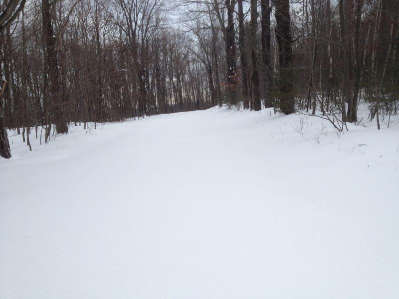Trail untouched