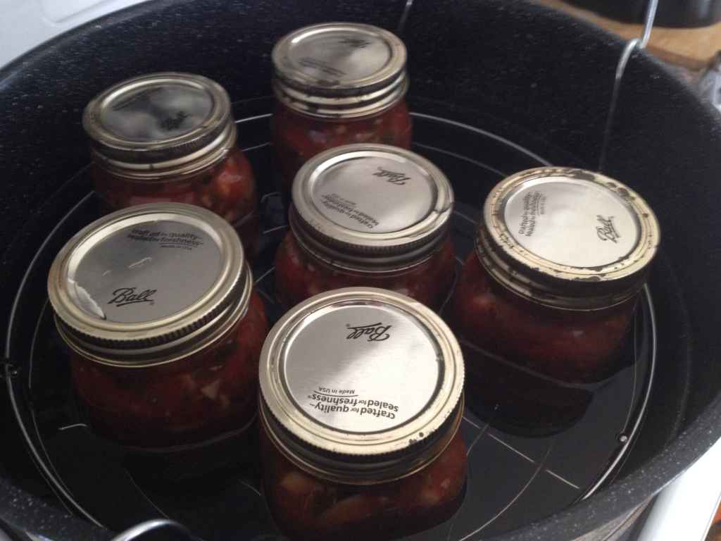 My Canning Recipe of Whatever is Left in The Garden Salsa