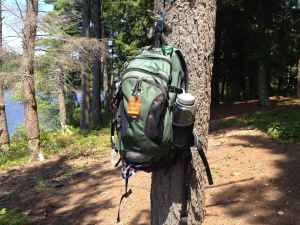 A Forager's Guide to the Essential Gear