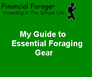 My Guide to Essential Foraging Gear
