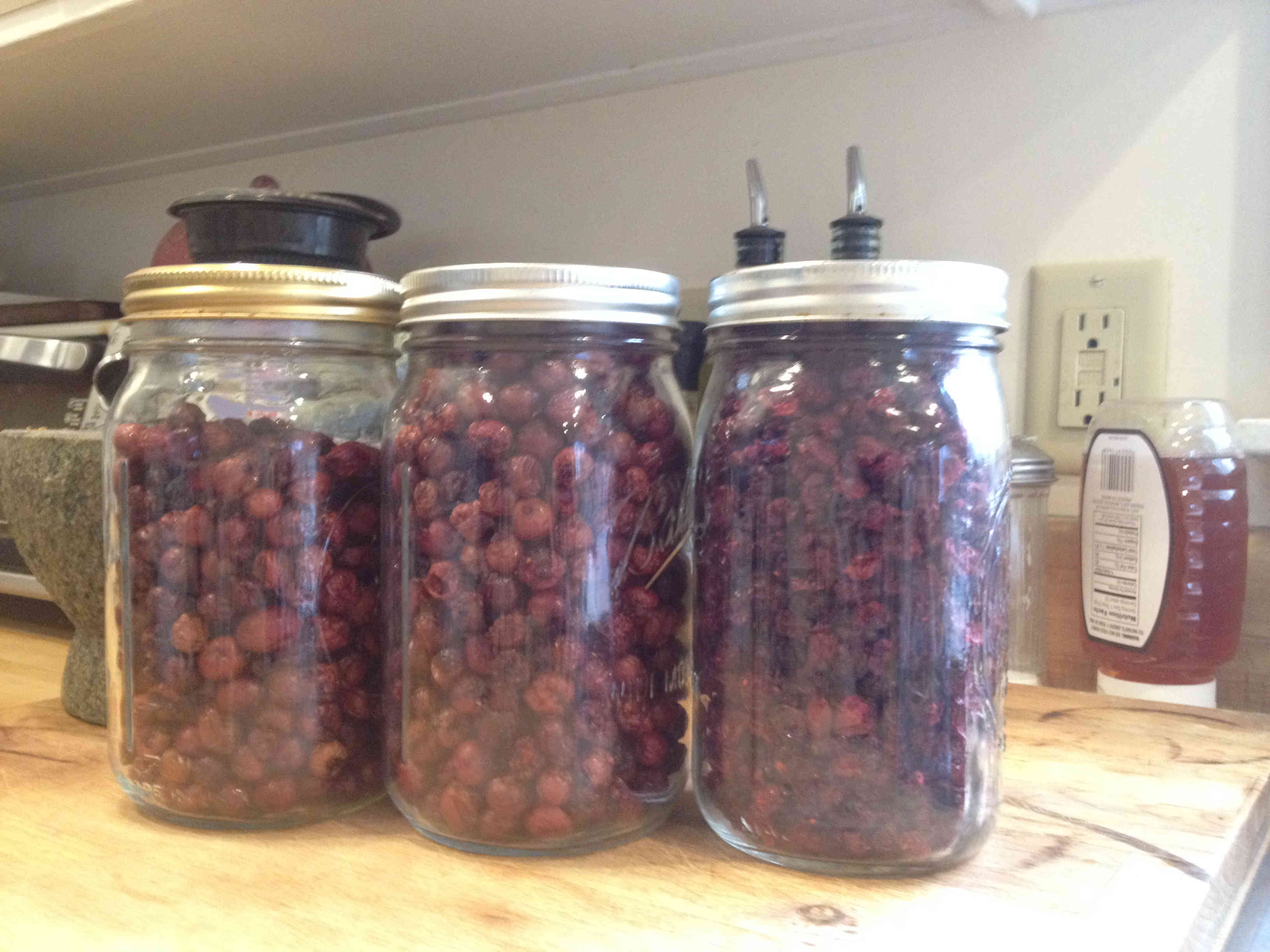 Cranberries Dehydrated in Jars