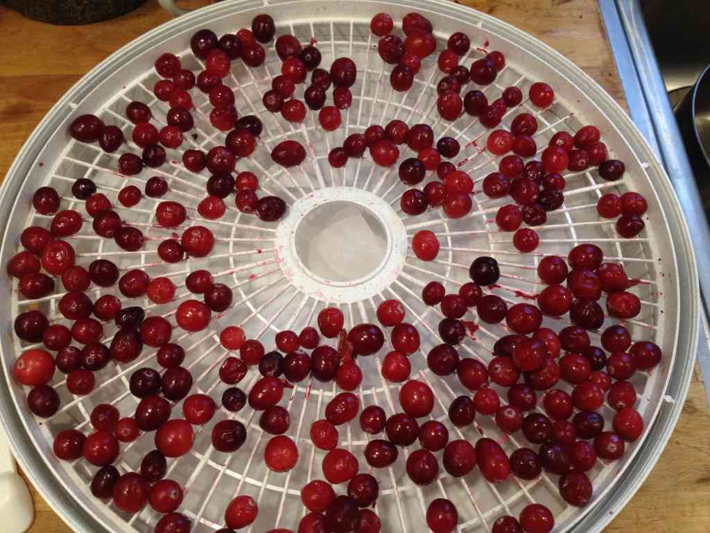 Dehydrating Cranberries with a Food Dehydrator