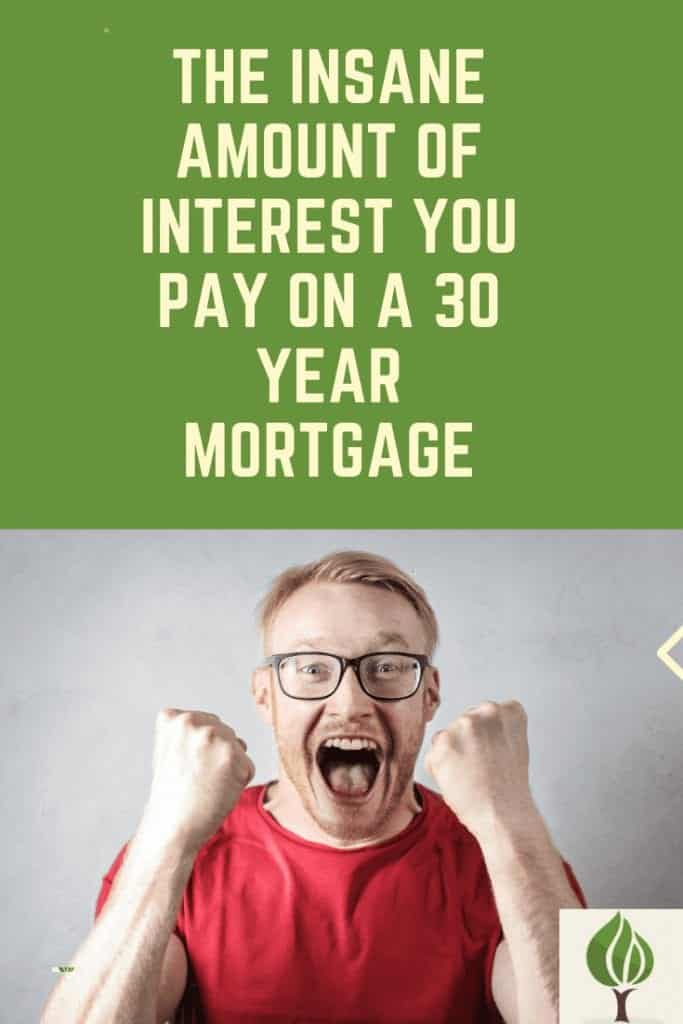 insane amount of interest paid on 30 year mortgage pinterest pin