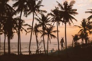 group of people admiring sunset on seashore