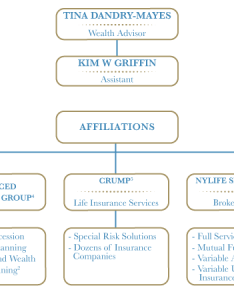 issued by new york life insurance and annuity corporation  delaware neither company nor its agents provide tax also organization chart financial strategies solutions tina rh financialsas