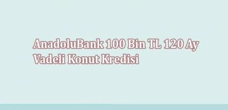 AnadoluBank 100 Bin TL 120 Ay Vadeli Konut Kredisi