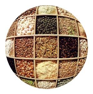 https://i0.wp.com/www.finanzalive.com/wp-content/uploads/2008/05/cereali_ns.jpg