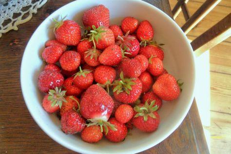 Erdbeer-Ernte am 01.06.2014