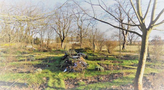 Planungen für das Gartenjahr 2018