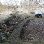 """Der neugestaltete Eingangsweg zwischen den Beeten """"Mohrchen"""" und Birke am 11.03.2018"""