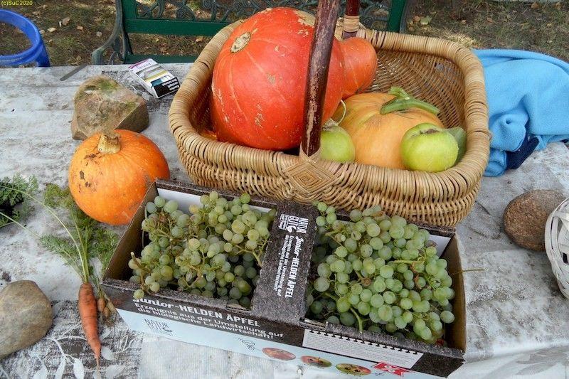 Möhre, Kürbis, Quitten, Wein, Zucchini 24.9.20