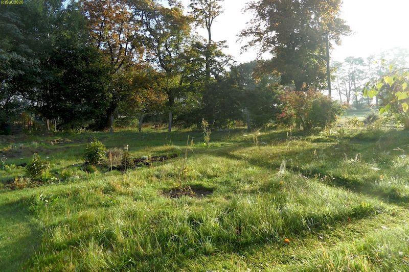 """Gartenblick nach Osten mit Beet """"Wolfgang"""" September 2013"""
