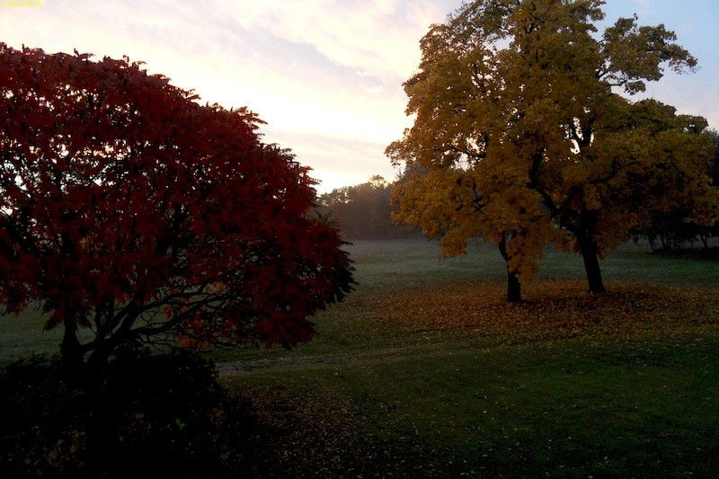 Abendliche Blick nach Südosten Oktober 2013
